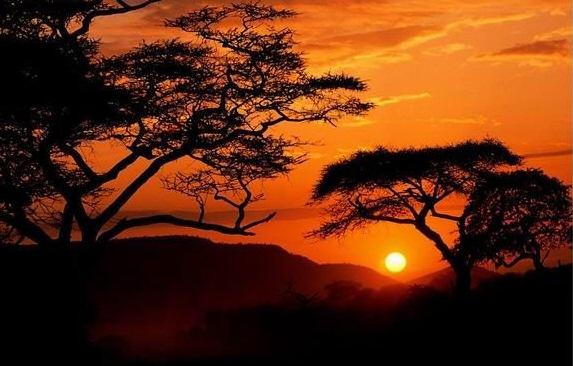 """Африка – какво може да научи цял свят от """"страдащия континент""""?"""