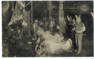 Чикагските кланици в началото на 20 век.
